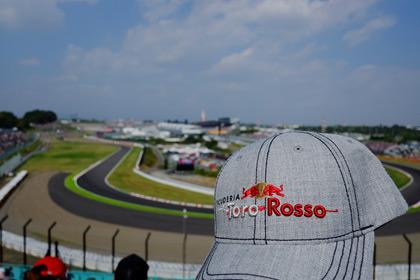 F1_cap_2013.jpg